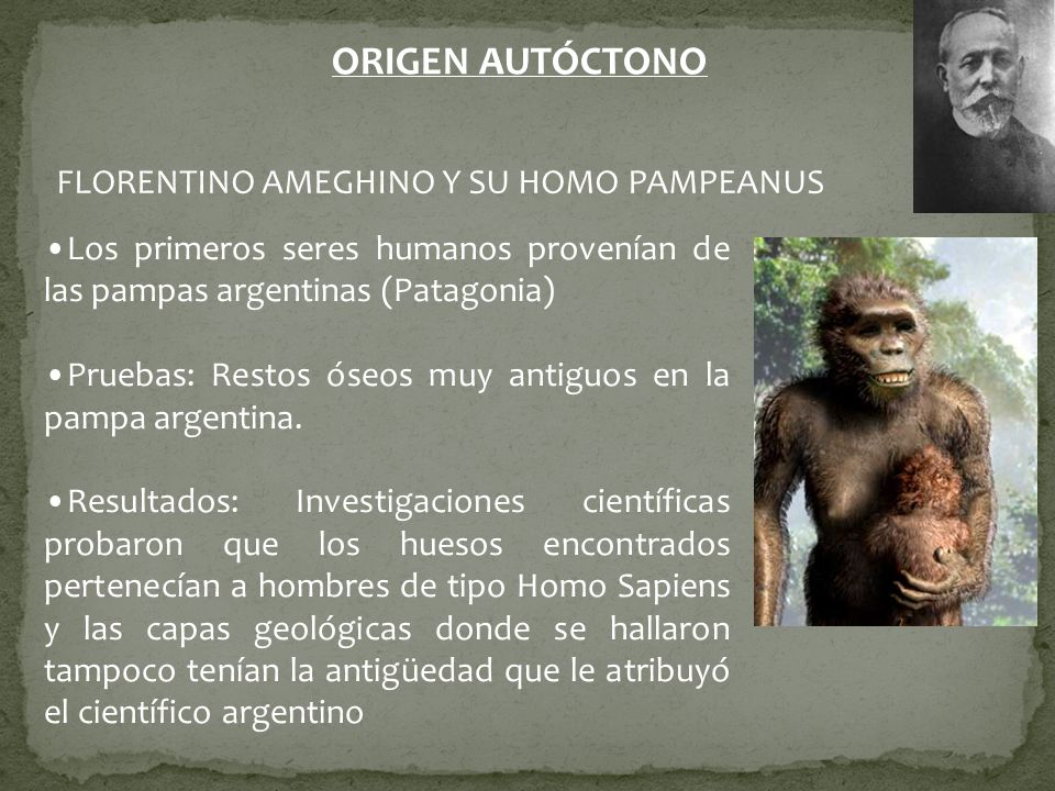 ORIGEN AUTÓCTONO FLORENTINO AMEGHINO Y SU HOMO PAMPEANUS Los primeros seres humanos provenían de las pampas argentinas (Patagonia) Pruebas: Restos óse