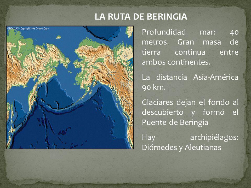 LA RUTA DE BERINGIA Profundidad mar: 40 metros. Gran masa de tierra continua entre ambos continentes. La distancia Asia-América 90 km. Glaciares dejan