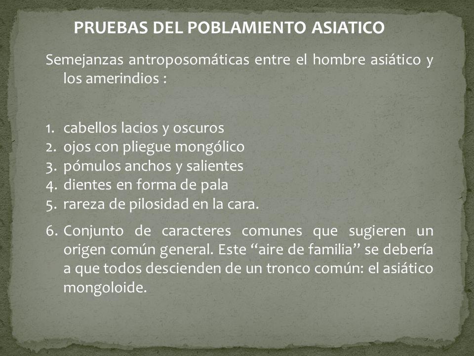 SEMEJANZAS ANTROPOSOMATICAS