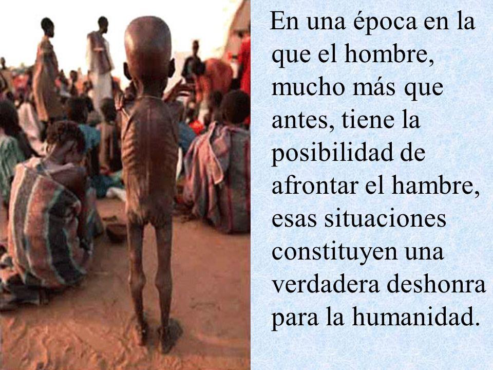 En una época en la que el hombre, mucho más que antes, tiene la posibilidad de afrontar el hambre, esas situaciones constituyen una verdadera deshonra