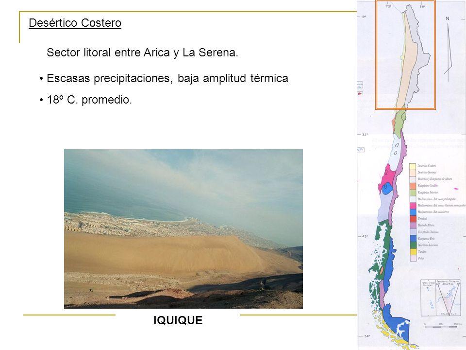 Desértico Costero Sector litoral entre Arica y La Serena. Escasas precipitaciones, baja amplitud térmica 18º C. promedio. IQUIQUE