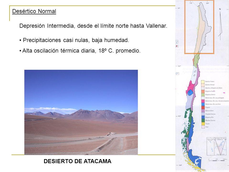 Desértico Normal Depresión Intermedia, desde el límite norte hasta Vallenar. DESIERTO DE ATACAMA Precipitaciones casi nulas, baja humedad. Alta oscila