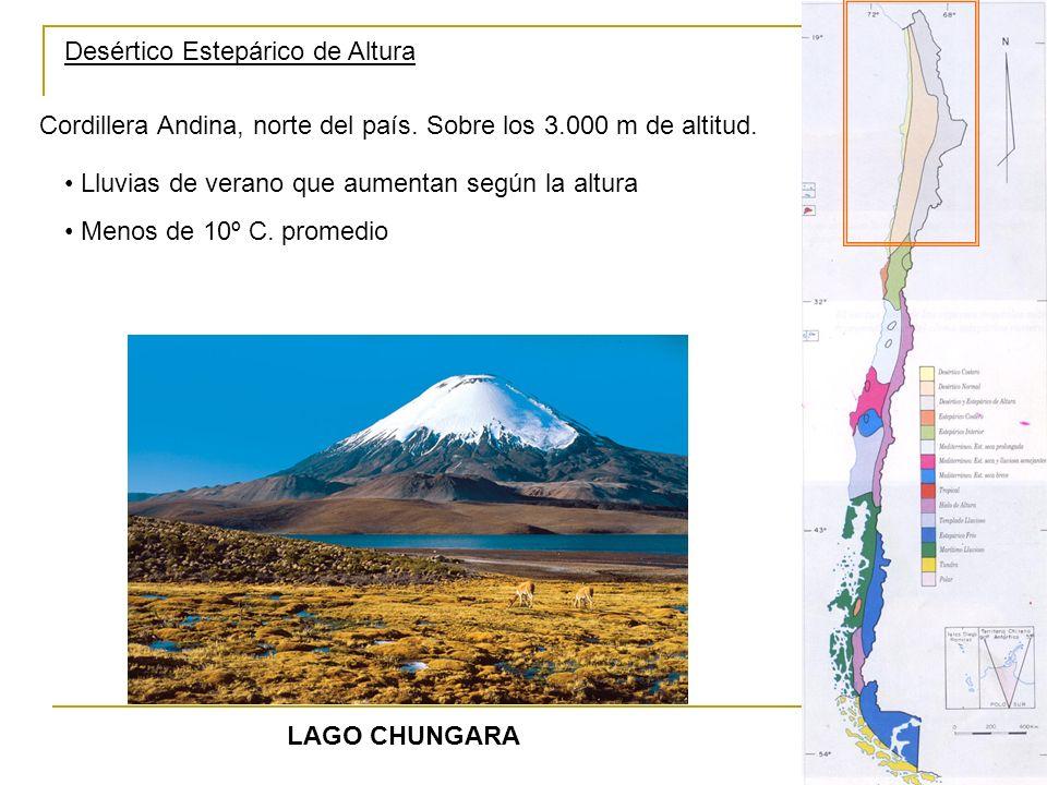 Desértico Estepárico de Altura Cordillera Andina, norte del país. Sobre los 3.000 m de altitud. LAGO CHUNGARA Lluvias de verano que aumentan según la