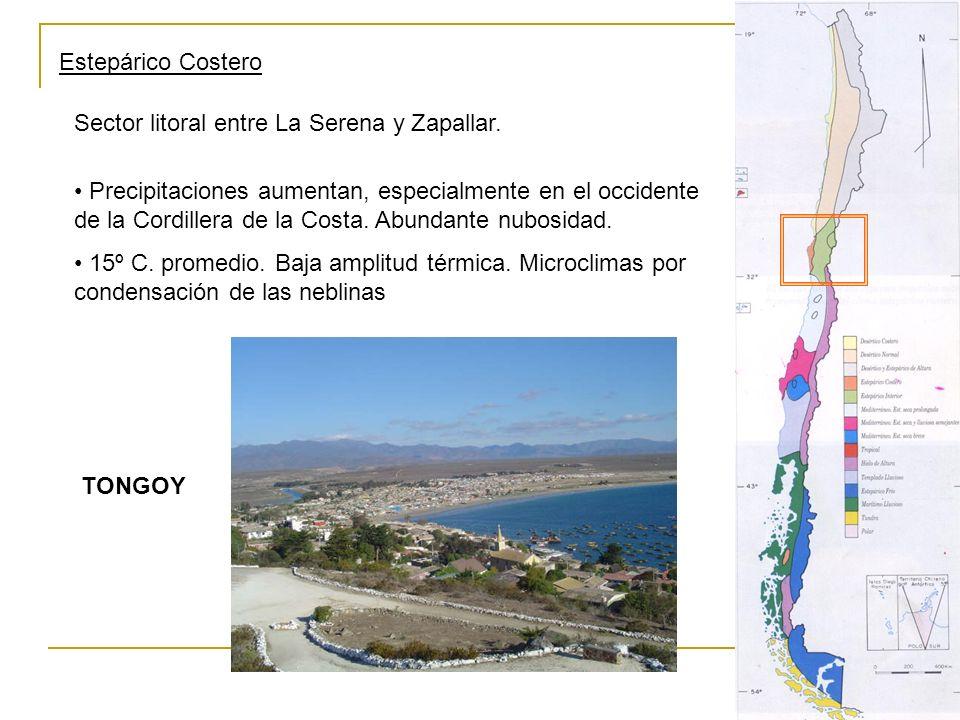 Estepárico Costero Sector litoral entre La Serena y Zapallar. Precipitaciones aumentan, especialmente en el occidente de la Cordillera de la Costa. Ab