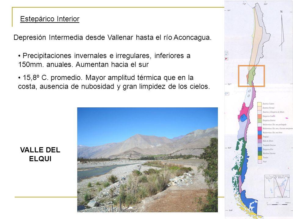 Estepárico Interior Depresión Intermedia desde Vallenar hasta el río Aconcagua. Precipitaciones invernales e irregulares, inferiores a 150mm. anuales.