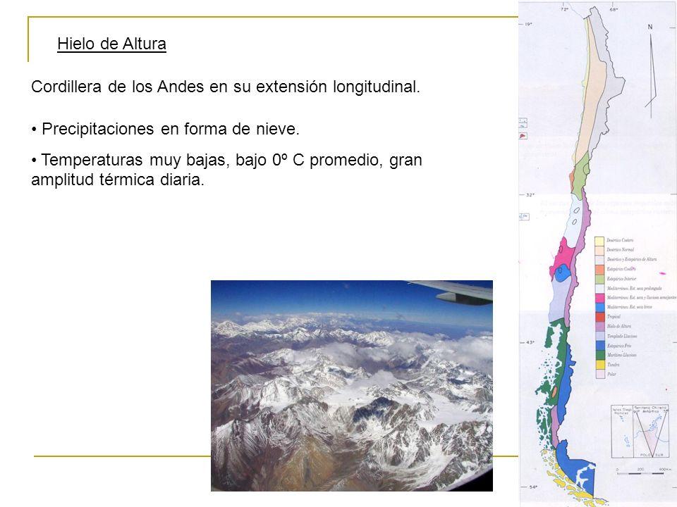 Hielo de Altura Cordillera de los Andes en su extensión longitudinal. Precipitaciones en forma de nieve. Temperaturas muy bajas, bajo 0º C promedio, g