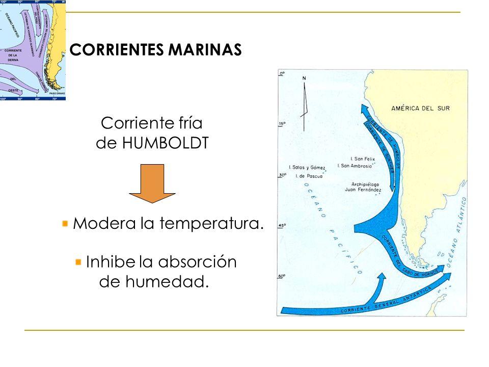Corriente fría de HUMBOLDT Modera la temperatura. Inhibe la absorción de humedad. CORRIENTES MARINAS