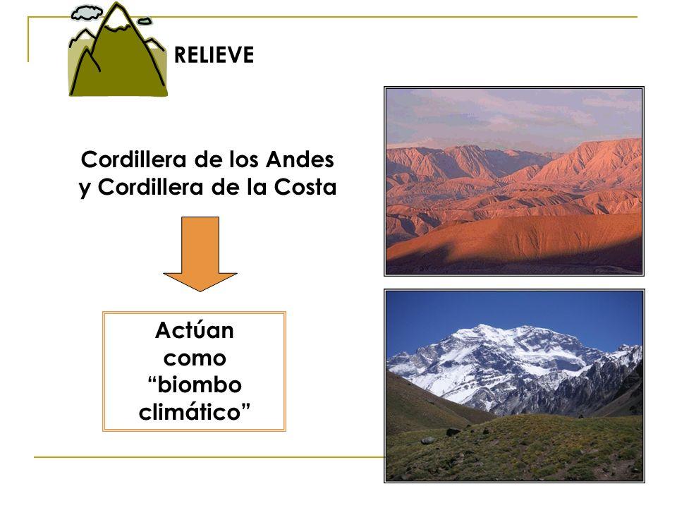 Cordillera de los Andes y Cordillera de la Costa Actúan como biombo climático RELIEVE
