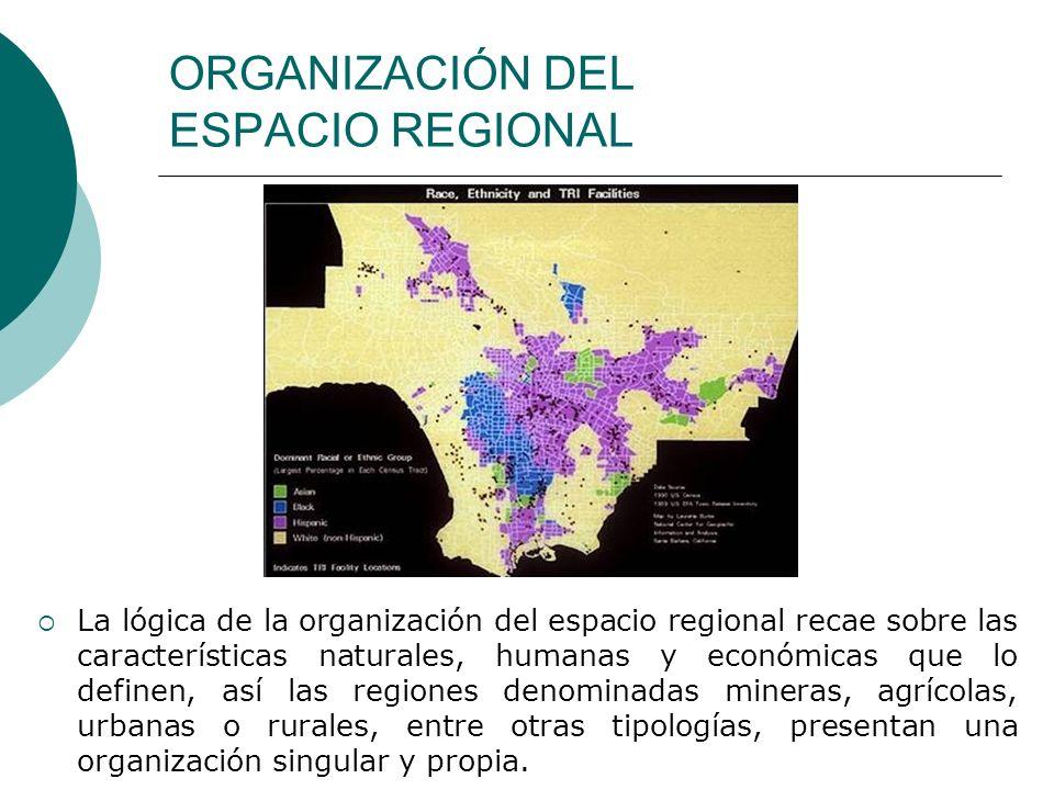 ORGANIZACIÓN DEL ESPACIO REGIONAL La lógica de la organización del espacio regional recae sobre las características naturales, humanas y económicas qu
