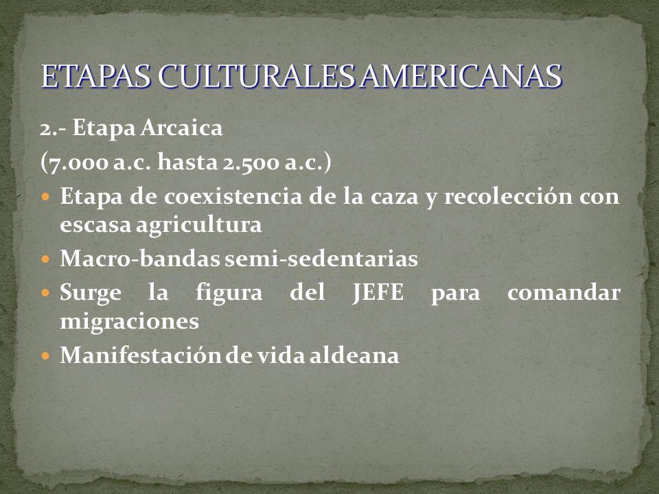 2.- Etapa Arcaica (7.000 a.c. hasta 2.500 a.c.) Etapa de coexistencia de la caza y recolección con escasa agricultura Macro-bandas semi-sedentarias Su
