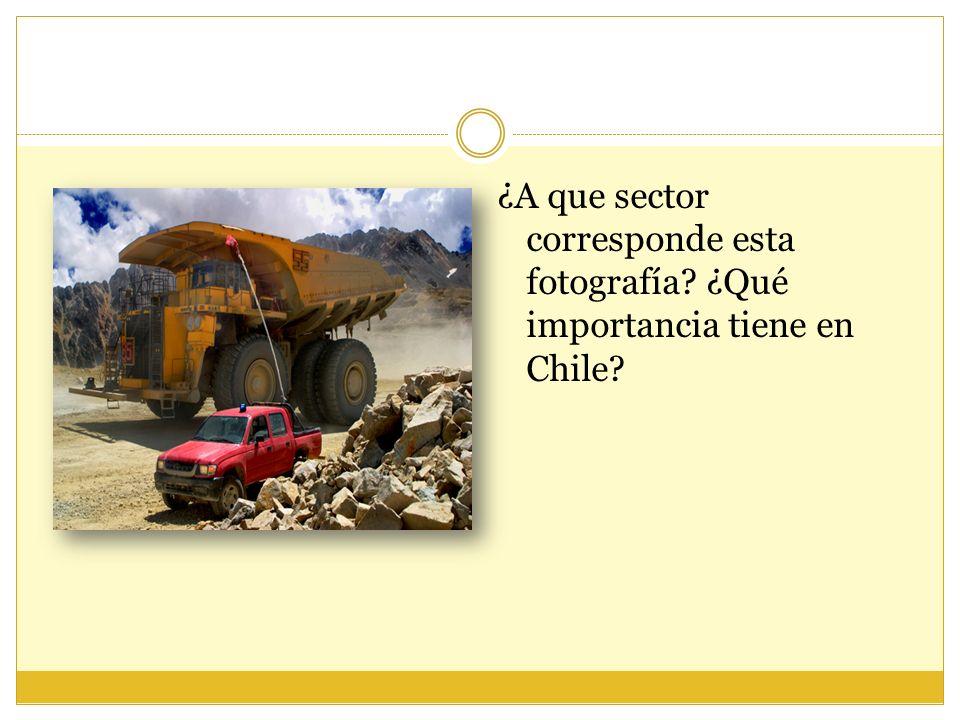 ¿A que sector corresponde esta fotografía? ¿Qué importancia tiene en Chile?