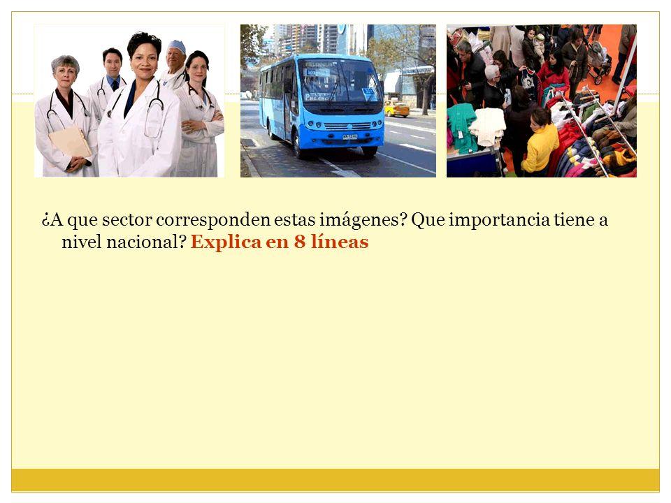 ¿A que sector corresponden estas imágenes? Que importancia tiene a nivel nacional? Explica en 8 líneas