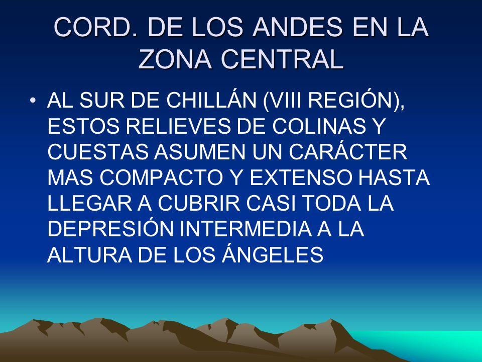 CORD. DE LOS ANDES EN LA ZONA CENTRAL AL SUR DE CHILLÁN (VIII REGIÓN), ESTOS RELIEVES DE COLINAS Y CUESTAS ASUMEN UN CARÁCTER MAS COMPACTO Y EXTENSO H