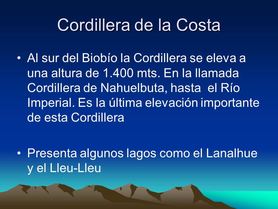 Cordillera de la Costa Al sur del Biobío la Cordillera se eleva a una altura de 1.400 mts. En la llamada Cordillera de Nahuelbuta, hasta el Río Imperi