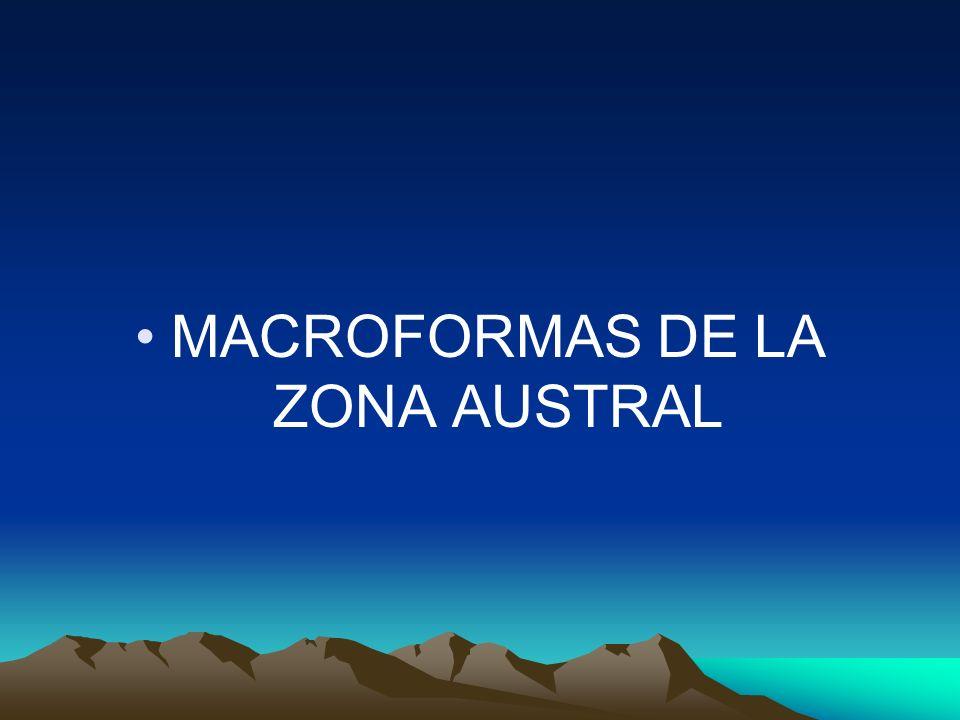 MACROFORMAS DE LA ZONA AUSTRAL