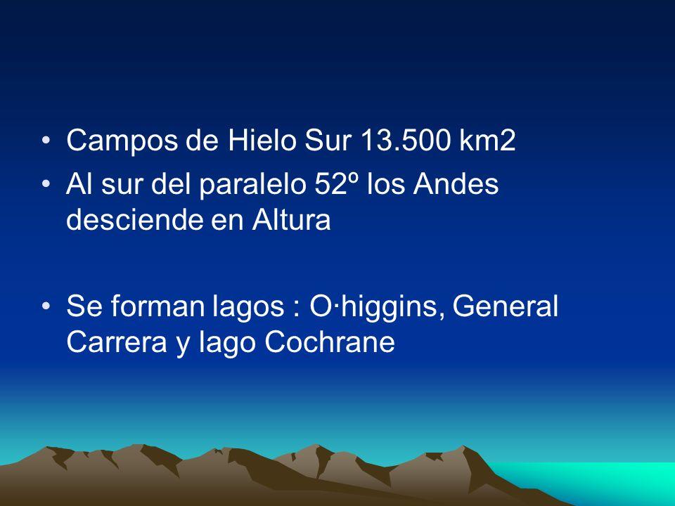 Campos de Hielo Sur 13.500 km2 Al sur del paralelo 52º los Andes desciende en Altura Se forman lagos : O·higgins, General Carrera y lago Cochrane