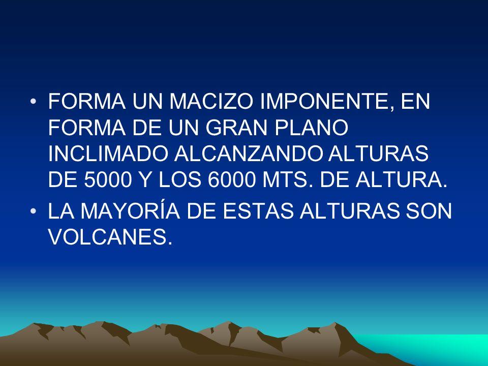FORMA UN MACIZO IMPONENTE, EN FORMA DE UN GRAN PLANO INCLIMADO ALCANZANDO ALTURAS DE 5000 Y LOS 6000 MTS. DE ALTURA. LA MAYORÍA DE ESTAS ALTURAS SON V