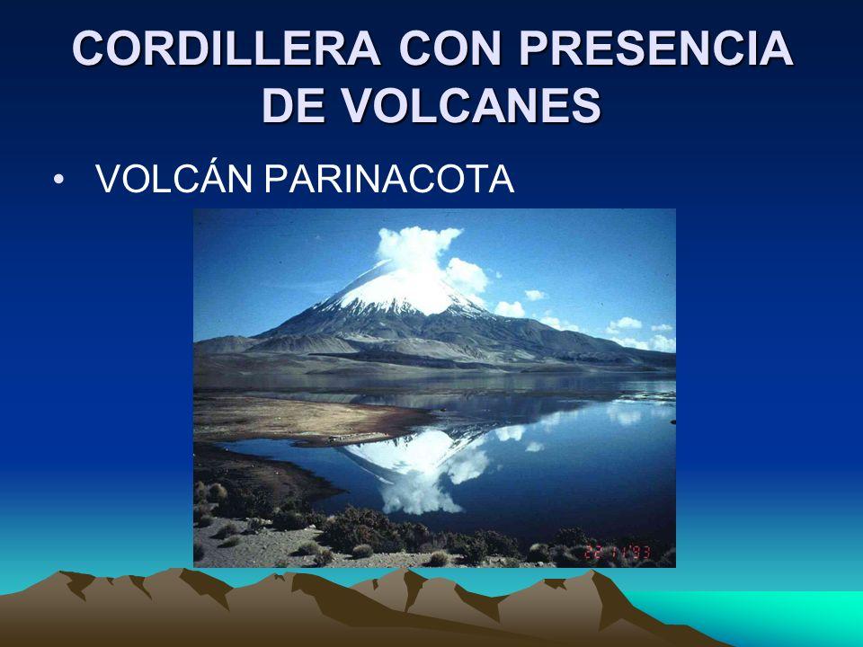 CORDILLERA CON PRESENCIA DE VOLCANES VOLCÁN PARINACOTA