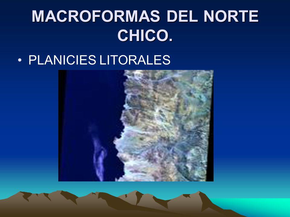 MACROFORMAS DEL NORTE CHICO. PLANICIES LITORALES