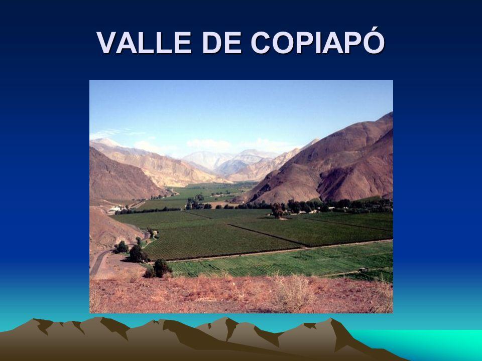 VALLE DE COPIAPÓ
