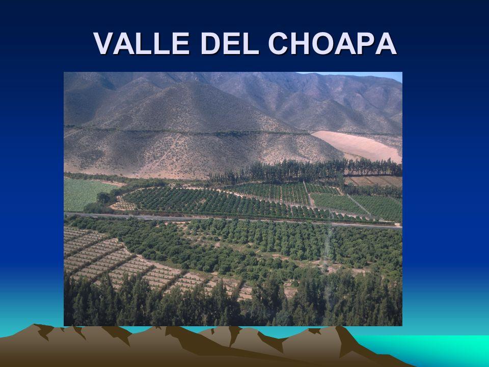 VALLE DEL CHOAPA