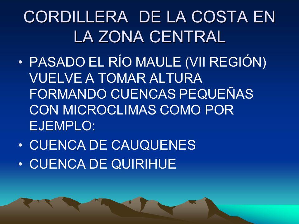 CORDILLERA DE LA COSTA EN LA ZONA CENTRAL PASADO EL RÍO MAULE (VII REGIÓN) VUELVE A TOMAR ALTURA FORMANDO CUENCAS PEQUEÑAS CON MICROCLIMAS COMO POR EJ