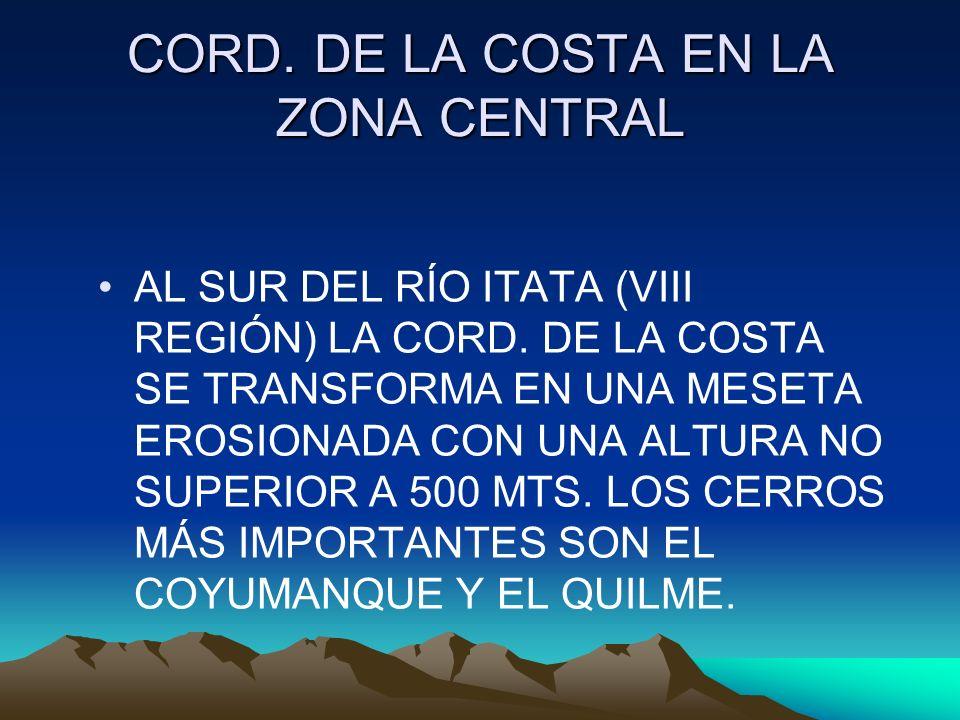 CORD. DE LA COSTA EN LA ZONA CENTRAL AL SUR DEL RÍO ITATA (VIII REGIÓN) LA CORD. DE LA COSTA SE TRANSFORMA EN UNA MESETA EROSIONADA CON UNA ALTURA NO