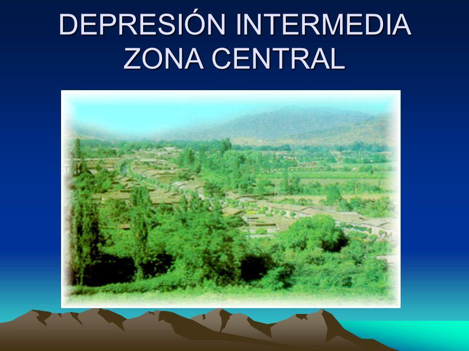 DEPRESIÓN INTERMEDIA ZONA CENTRAL