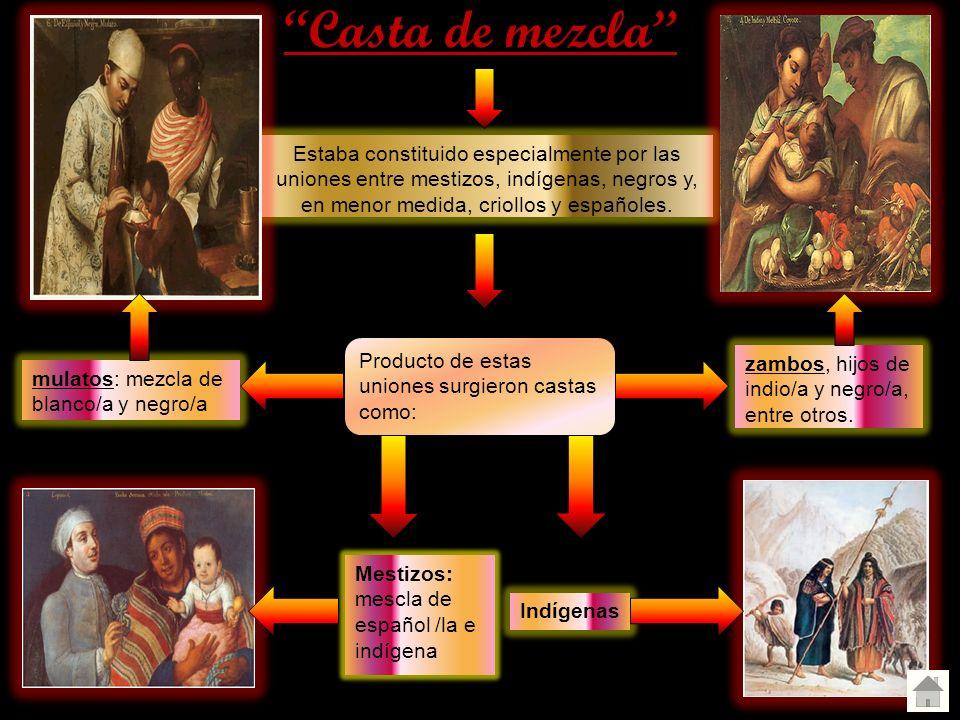 Casta de mezcla Estaba constituido especialmente por las uniones entre mestizos, indígenas, negros y, en menor medida, criollos y españoles. Producto