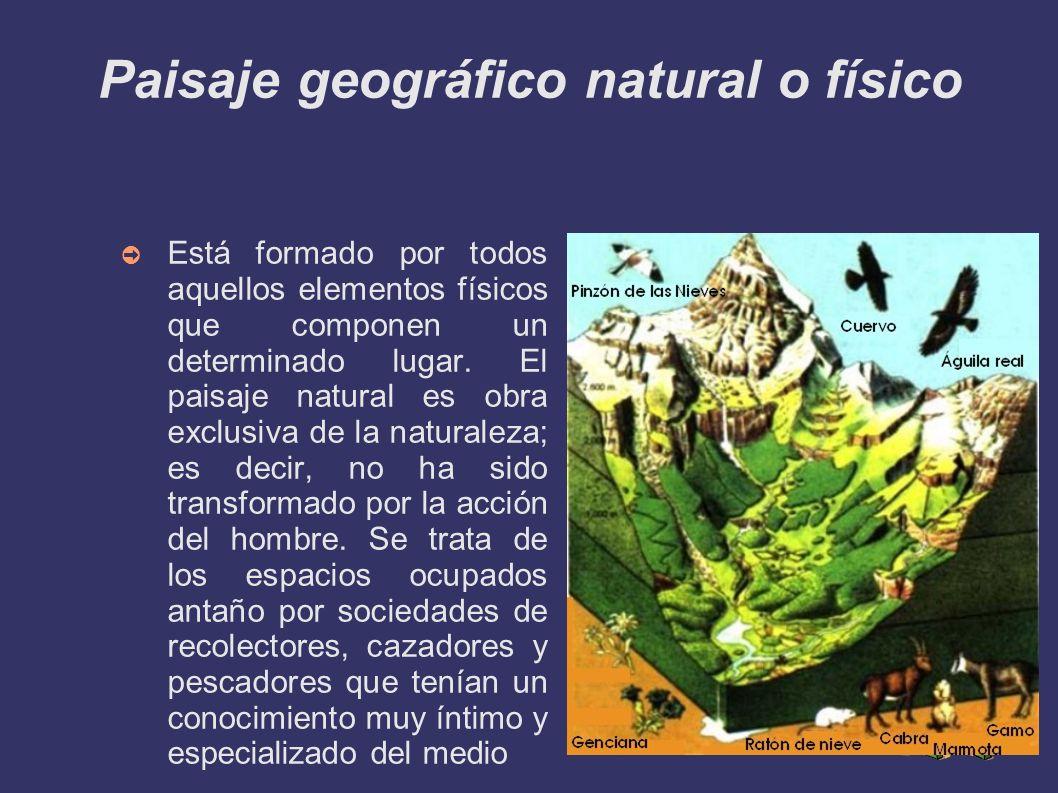 Paisaje geográfico natural o físico Está formado por todos aquellos elementos físicos que componen un determinado lugar. El paisaje natural es obra ex