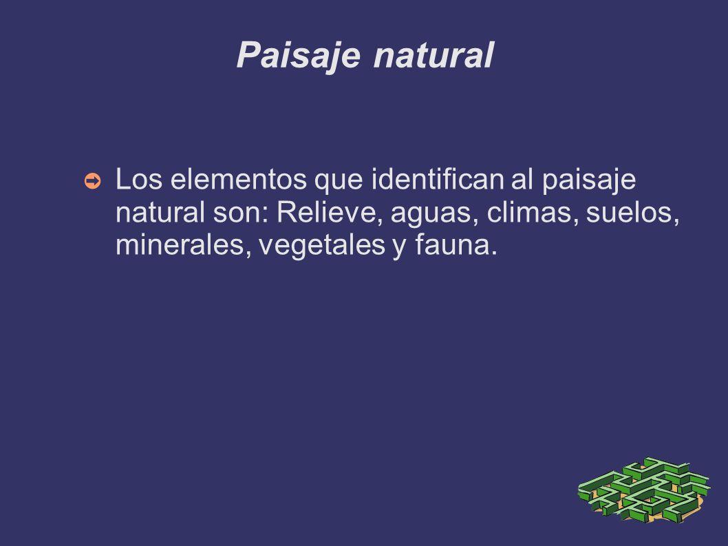 Paisaje natural Los elementos que identifican al paisaje natural son: Relieve, aguas, climas, suelos, minerales, vegetales y fauna.