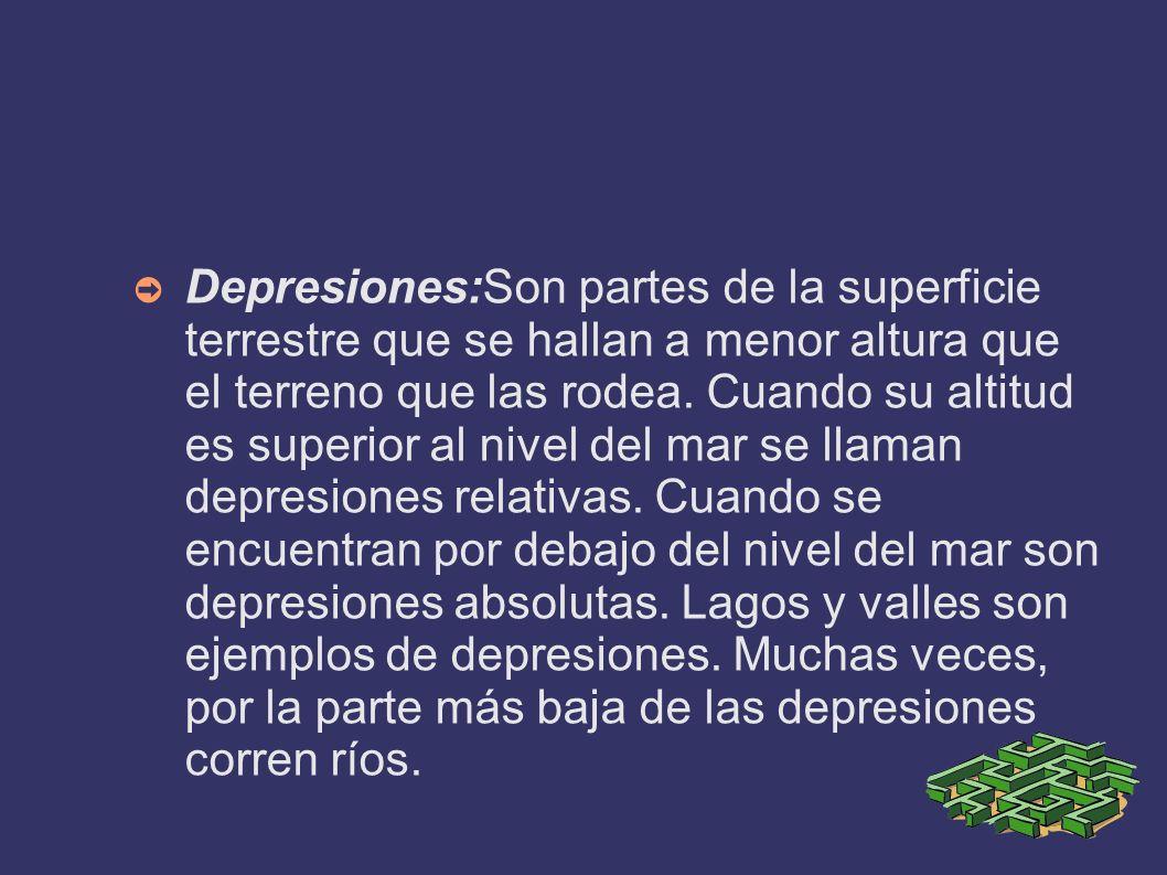 Depresiones:Son partes de la superficie terrestre que se hallan a menor altura que el terreno que las rodea. Cuando su altitud es superior al nivel de