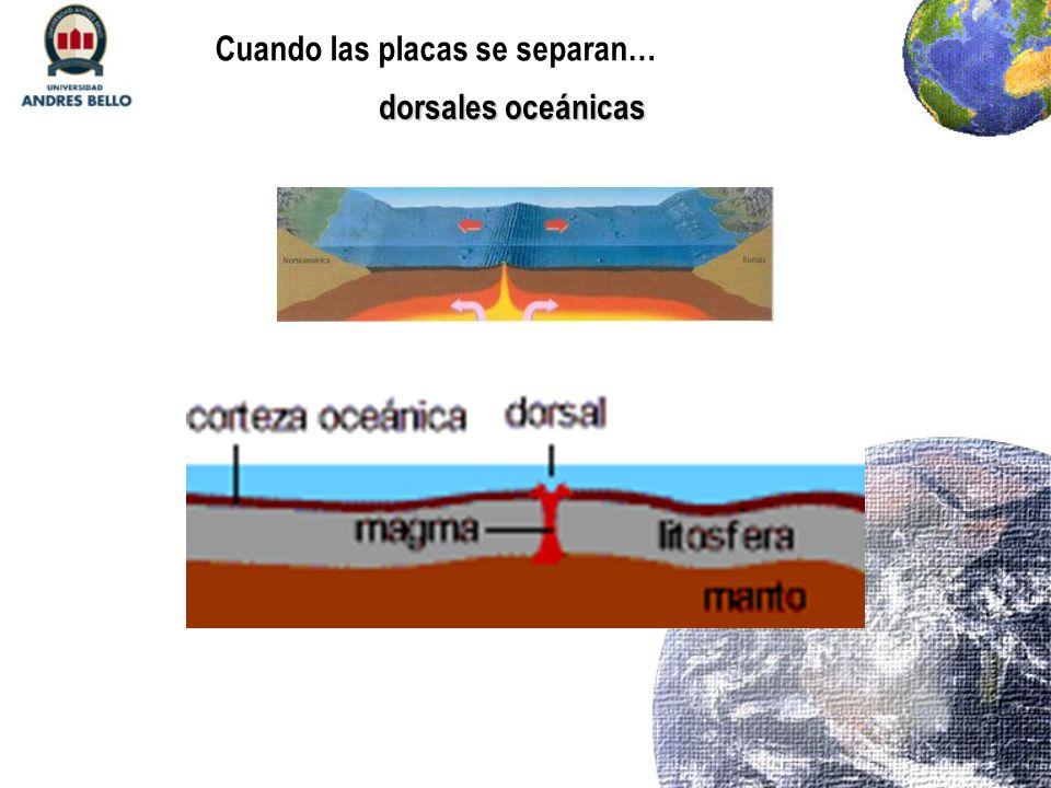 dorsales oceánicas Cuando las placas se separan…