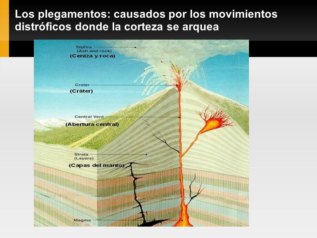 Los plegamentos: causados por los movimientos distróficos donde la corteza se arquea