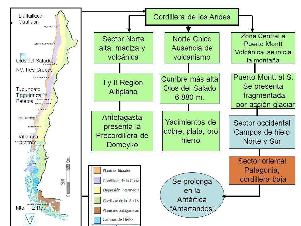 Cordillera de los Andes Sector Norte alta, maciza y volcánica Norte Chico Ausencia de volcanismo Zona Central a Puerto Montt Volcánica, se inicia la m