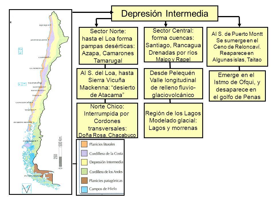 Depresión Intermedia Sector Norte: hasta el Loa forma pampas desérticas: Azapa, Camarones Tamarugal Sector Central: forma cuencas: Santiago, Rancagua