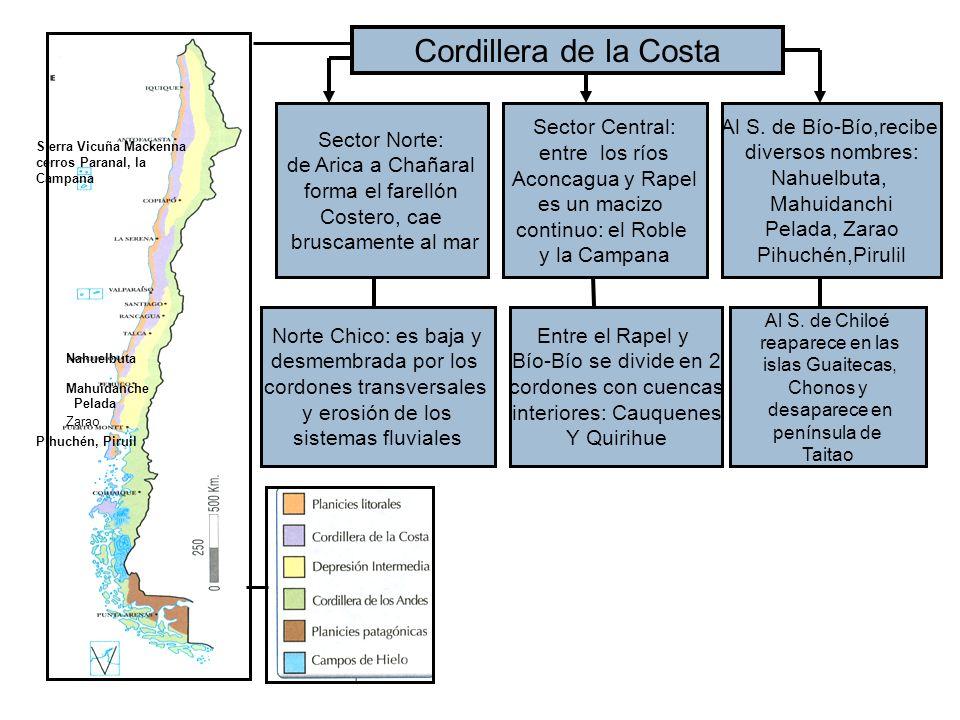Cordillera de la Costa Sector Norte: de Arica a Chañaral forma el farellón Costero, cae bruscamente al mar Sector Central: entre los ríos Aconcagua y Rapel es un macizo continuo: el Roble y la Campana Al S.