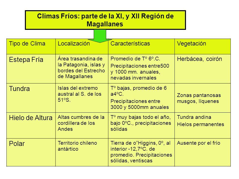 Climas Fríos: parte de la XI, y XII Región de Magallanes Tipo de ClimaLocalizaciónCaracterísticasVegetación Estepa Fría Área trasandina de la Patagonia, islas y bordes del Estrecho de Magallanes Promedio de Tº 6º.C.