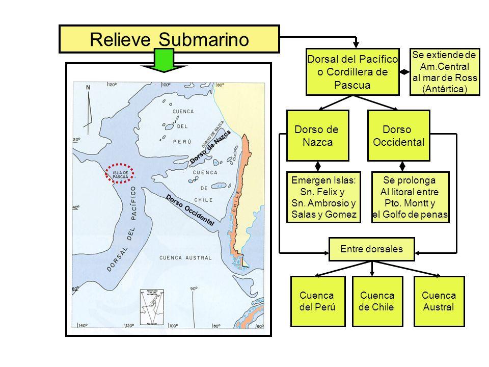 Climas Templados: IX Región a XII Región de Magallanes Tipo de ClimaLocalizaciónCaracterísticasVegetación Templado Marítimo Lluvioso Puerto Montt a Península de Taitao.