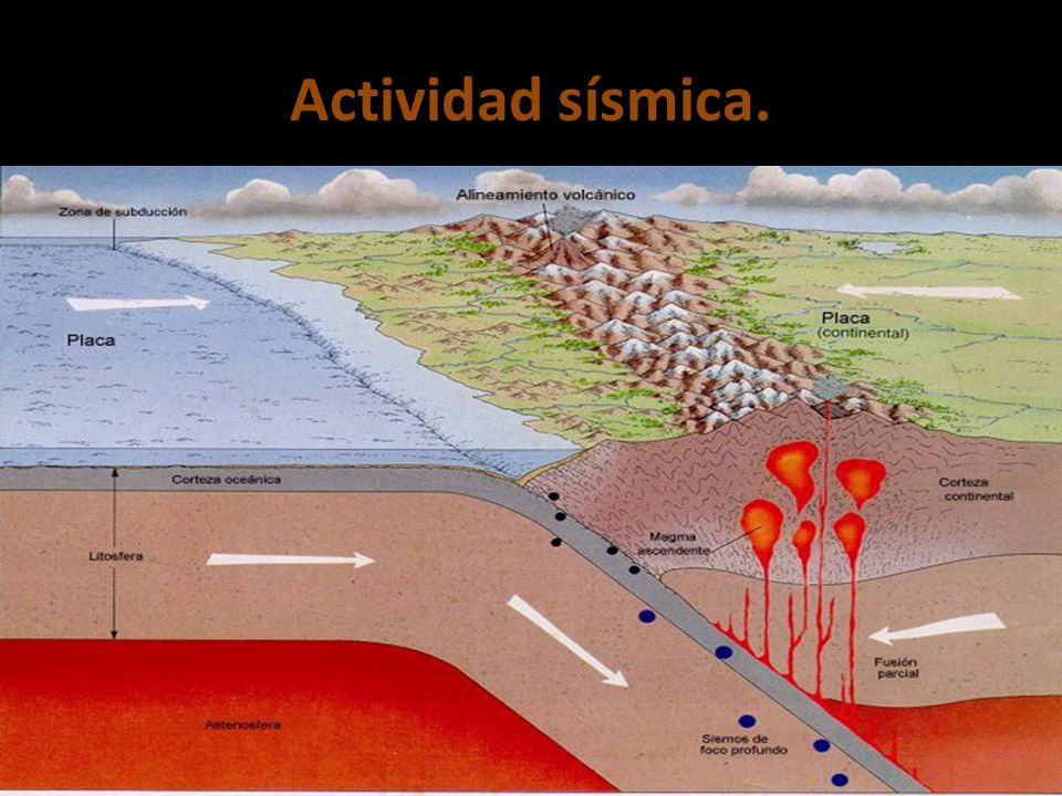 Actividad sísmica.