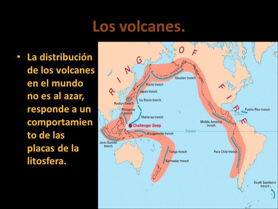Los volcanes. La distribución de los volcanes en el mundo no es al azar, responde a un comportamien to de las placas de la litosfera.