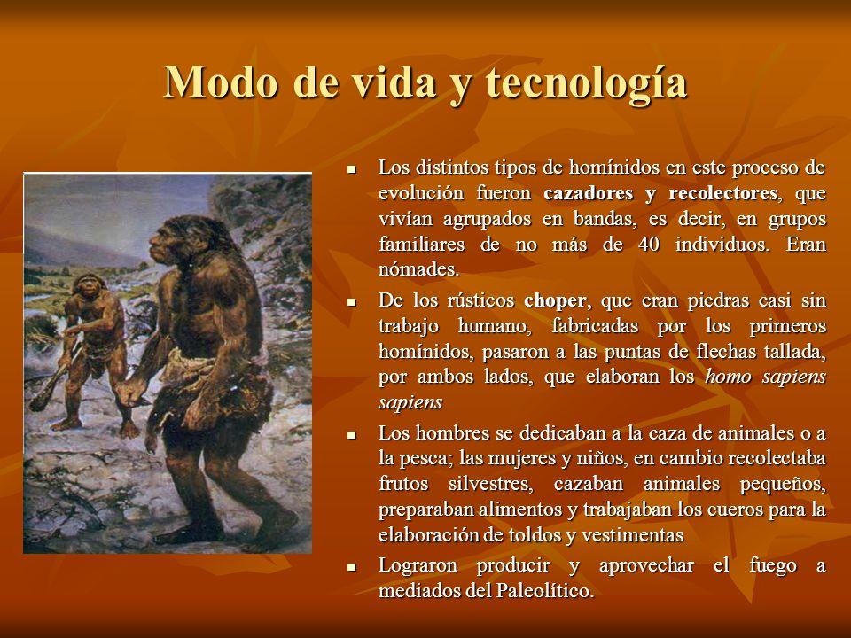 Modo de vida y tecnología Los distintos tipos de homínidos en este proceso de evolución fueron cazadores y recolectores, que vivían agrupados en banda