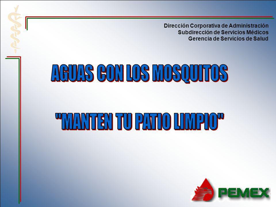 Dirección Corporativa de Administración Subdirección de Servicios Médicos Gerencia de Servicios de Salud