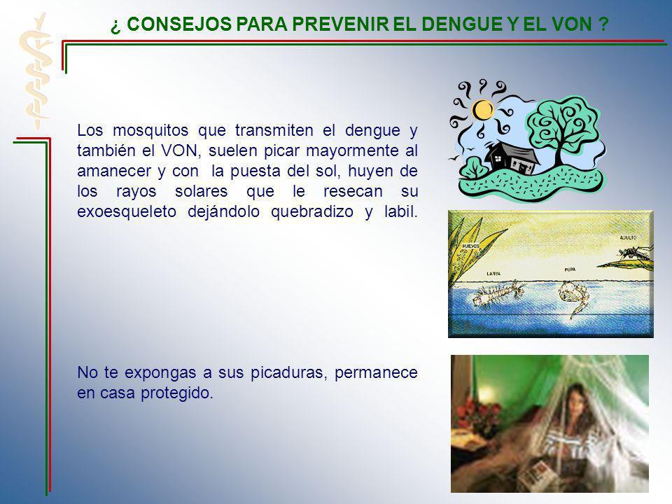 Los mosquitos que transmiten el dengue y también el VON, suelen picar mayormente al amanecer y con la puesta del sol, huyen de los rayos solares que le resecan su exoesqueleto dejándolo quebradizo y labil.