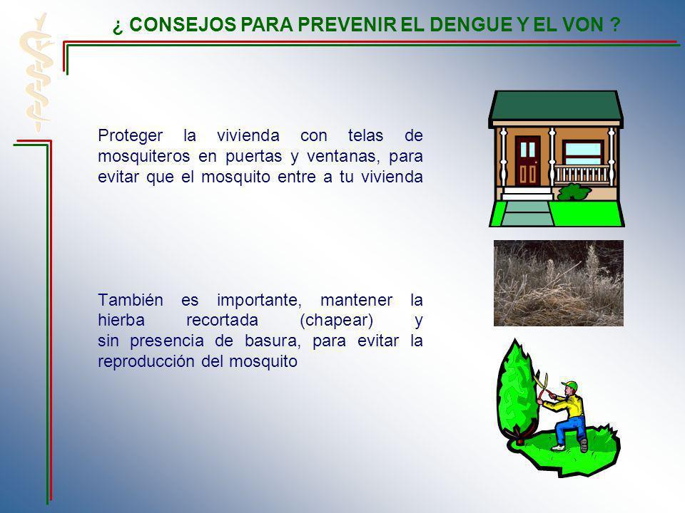 Proteger la vivienda con telas de mosquiteros en puertas y ventanas, para evitar que el mosquito entre a tu vivienda También es importante, mantener l