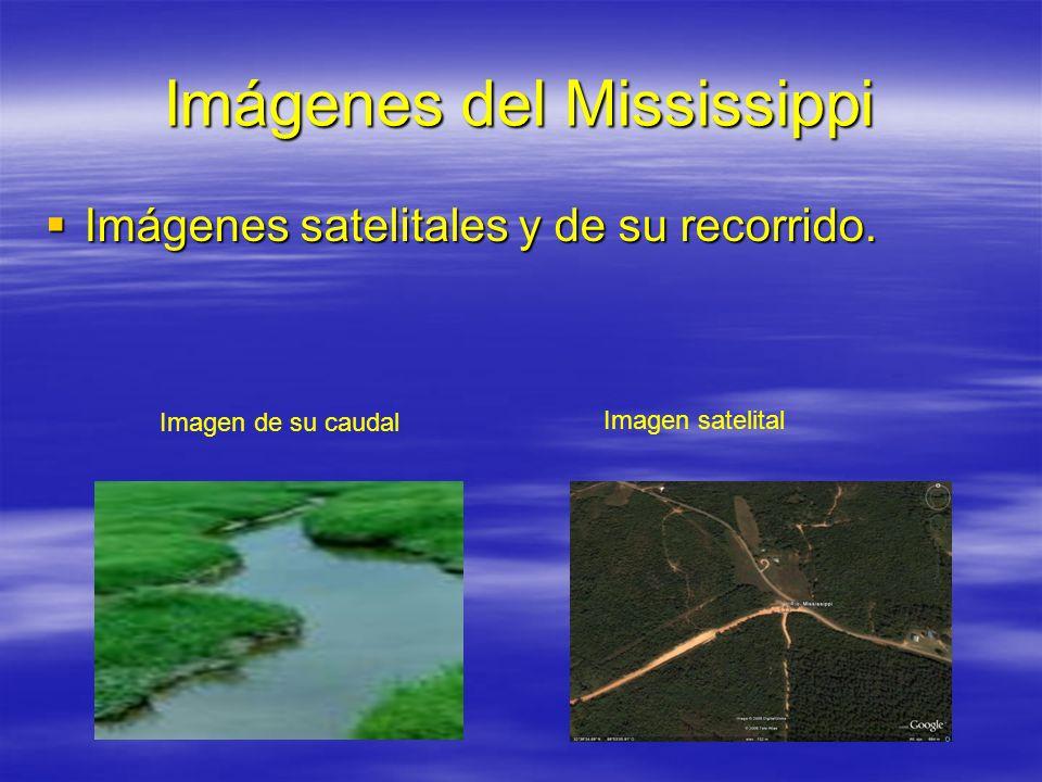 Imágenes del Mississippi Imágenes satelitales y de su recorrido. Imágenes satelitales y de su recorrido. Imagen de su caudal Imagen satelital