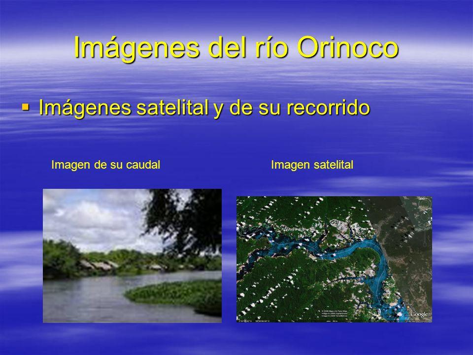 Imágenes del río Orinoco Imágenes satelital y de su recorrido Imágenes satelital y de su recorrido Imagen de su caudalImagen satelital