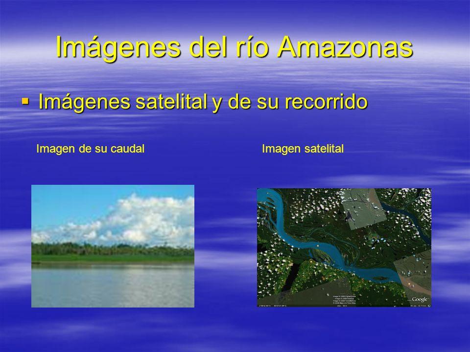 Imágenes del río Amazonas Imágenes satelital y de su recorrido Imágenes satelital y de su recorrido Imagen de su caudalImagen satelital