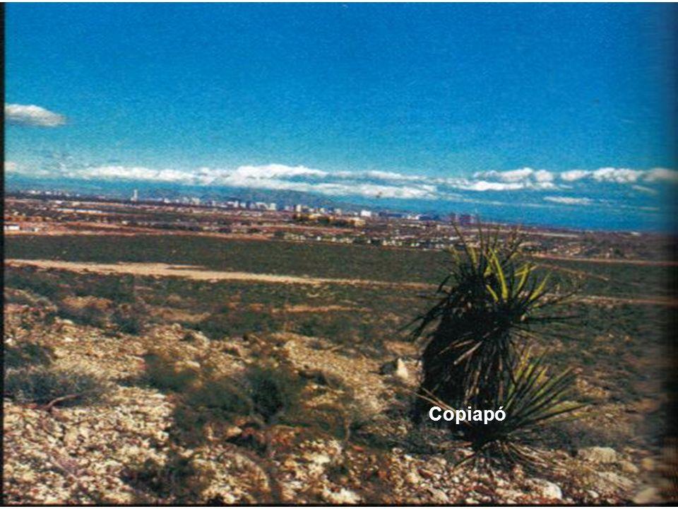 Zona Austral Patagonia Norte Patagonia Norte Abarca la región de Aysén (XI).