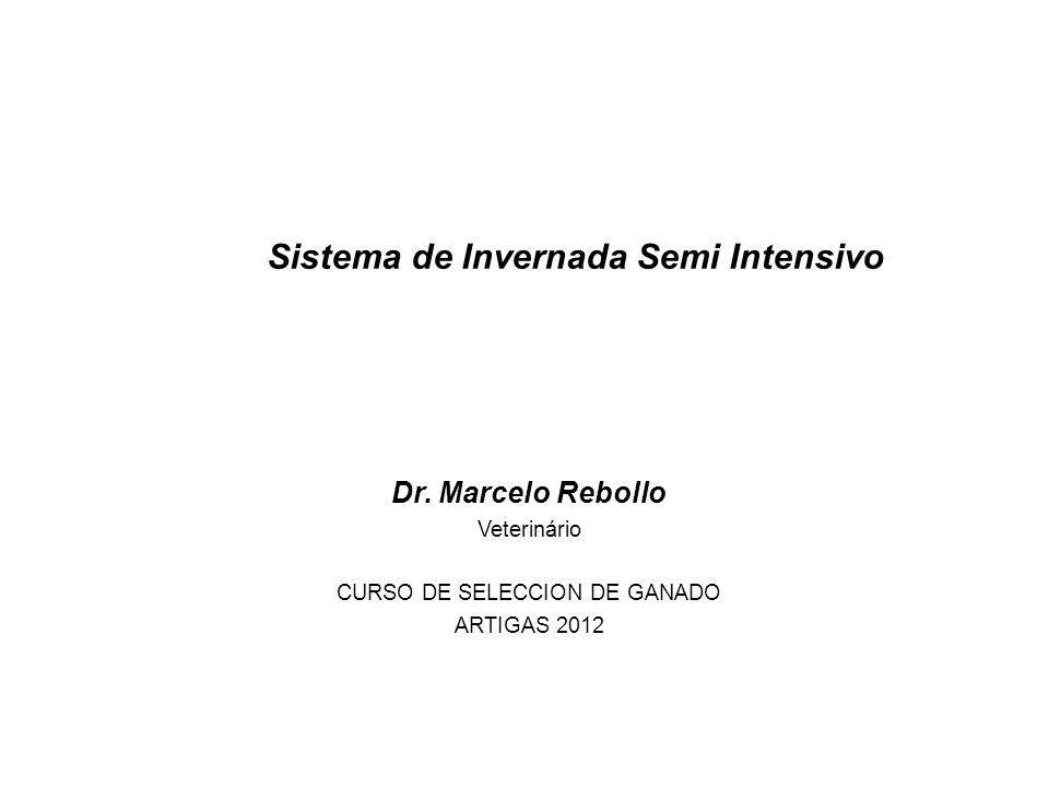 Quebracho S.A.2 1.